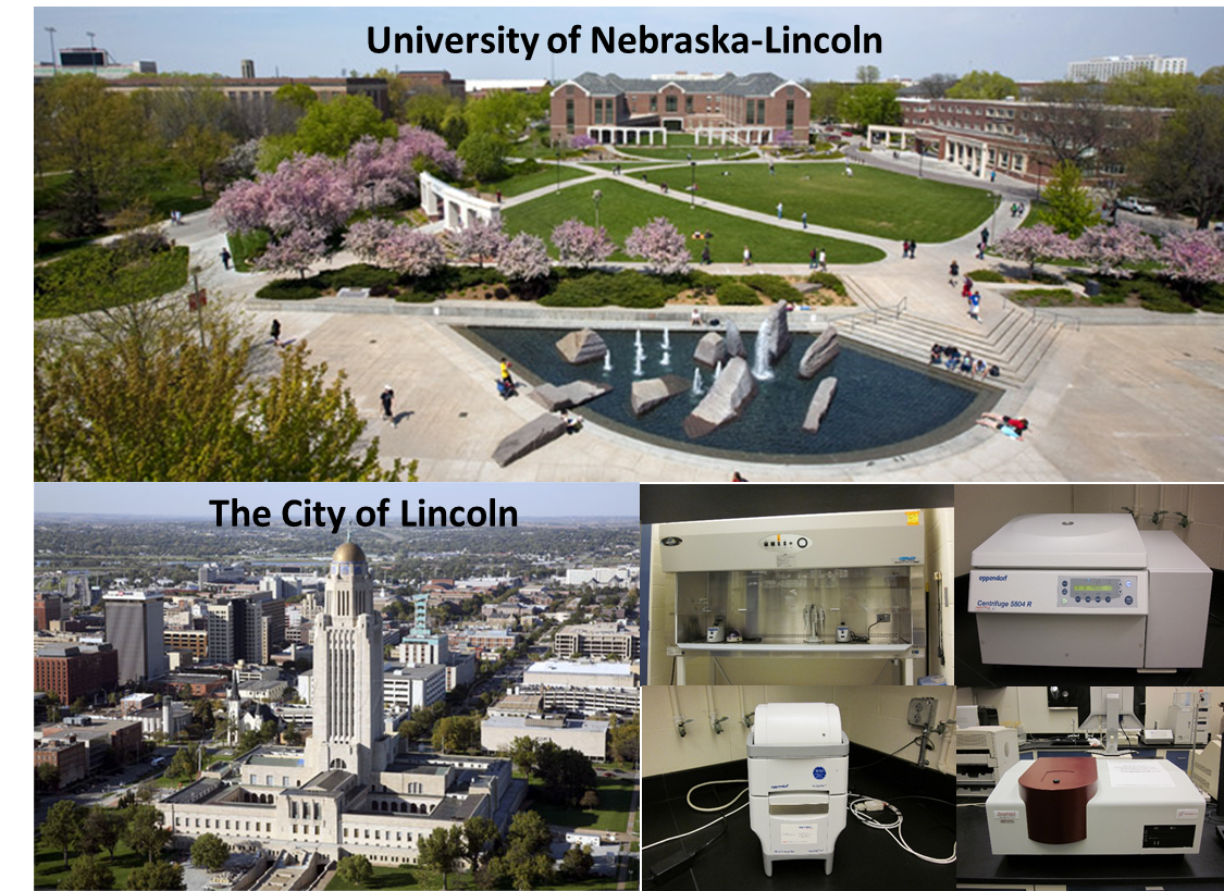 The University of Nebraska and City of Lincoln