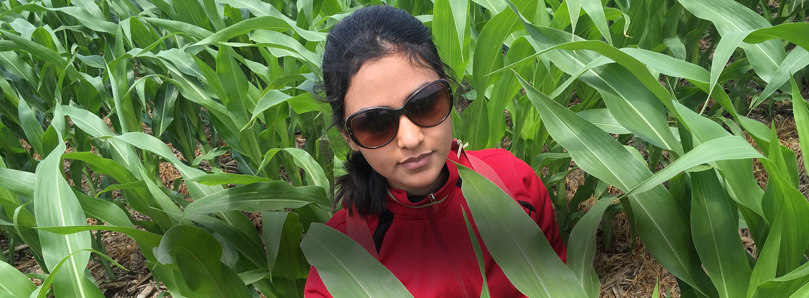 Vasudha Sharma standing in the middle of a corn field