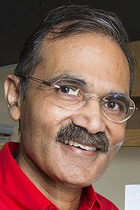 Ravi Saraf, Professor of Chemical and Biomolecular Engineering