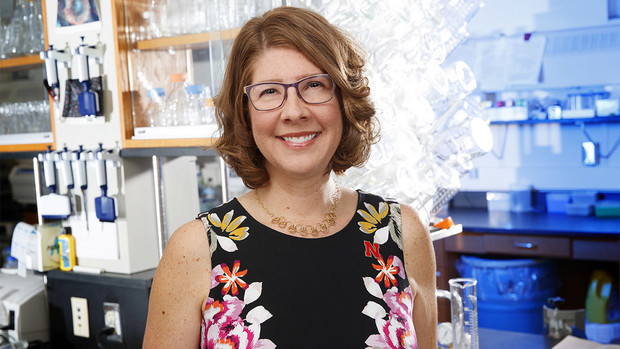 Angie Pannier, professor of biological systems engineering, was awarded the Presidential Early Career Award for Scientists and Engineers.