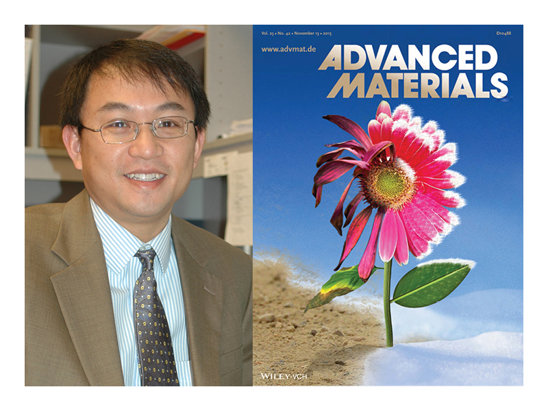 Research by Li Tan is featured in the Nov. 13 edition of the journal Advanced Materials