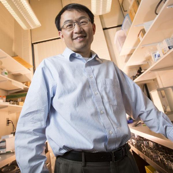 Li Tan, associate professor of mechanical and materials engineering