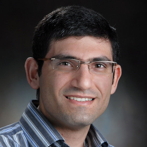 Ali Tamayol, assistant professor of mechanical and materials engineering