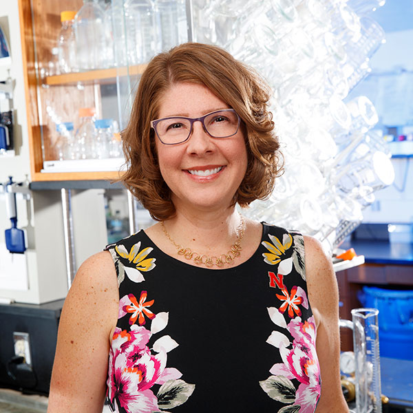 Angela Pannier, associate professor of biological systems engineering, has earned a National Institutes of Health Director's New Innovator Award.