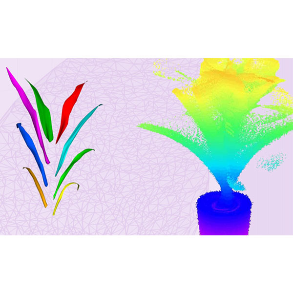 Nebraska researchers have devised a more efficient and accurate way to scan the structural properties of plants.