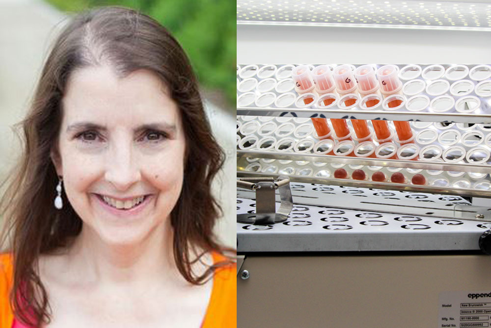 Cheryl Immethun, a postdoctoral researcher in chemical and biomolecular engineering, is working to find ways to create symbiosis between bacteria and food grain plants that could reduce the need for fertilizers.