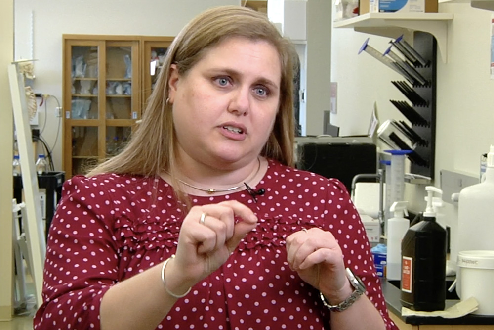Nicole Iverson, assistant professor of biological systems engineering, is developing nanoscopic sensors aimed at detecting earlier hints of disease at the cellular level