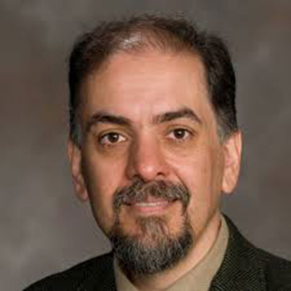 Mehrdad Negahban, professor of mechanical and materials engineering.