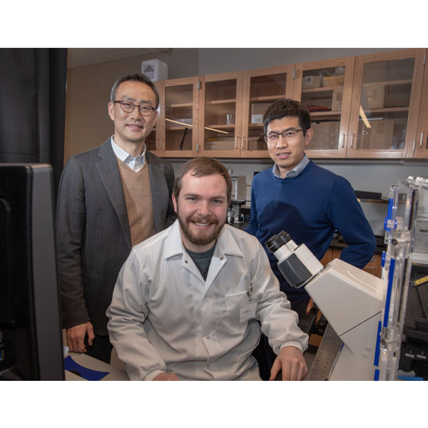 Research done by Ruiguo Yang (back right), Jung Yul Lim (back left), and a team of students, including Jordan Rosenbohm, seeks to understand how individual cells communicate with each other as they respond to environmental changes. (Greg Nathan / University Communication)