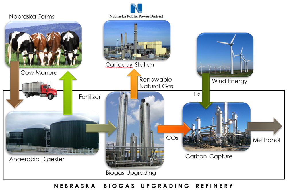 The Nebraska Biogas Upgrading Refinery, proposed by a team of chemical and biomolecular engineering students, would allow NPPD to turn cow manure into both natural gas and fertilizer. The gas would then be shipped to the Canaday Station, where it would be used to create electricity.