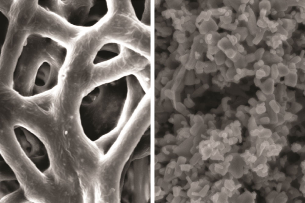 Images of the team's membrane (left) and the zinc nanoparticles (right) embedded within it. (Photo by Advanced Functional Materials / Wiley-VCH)