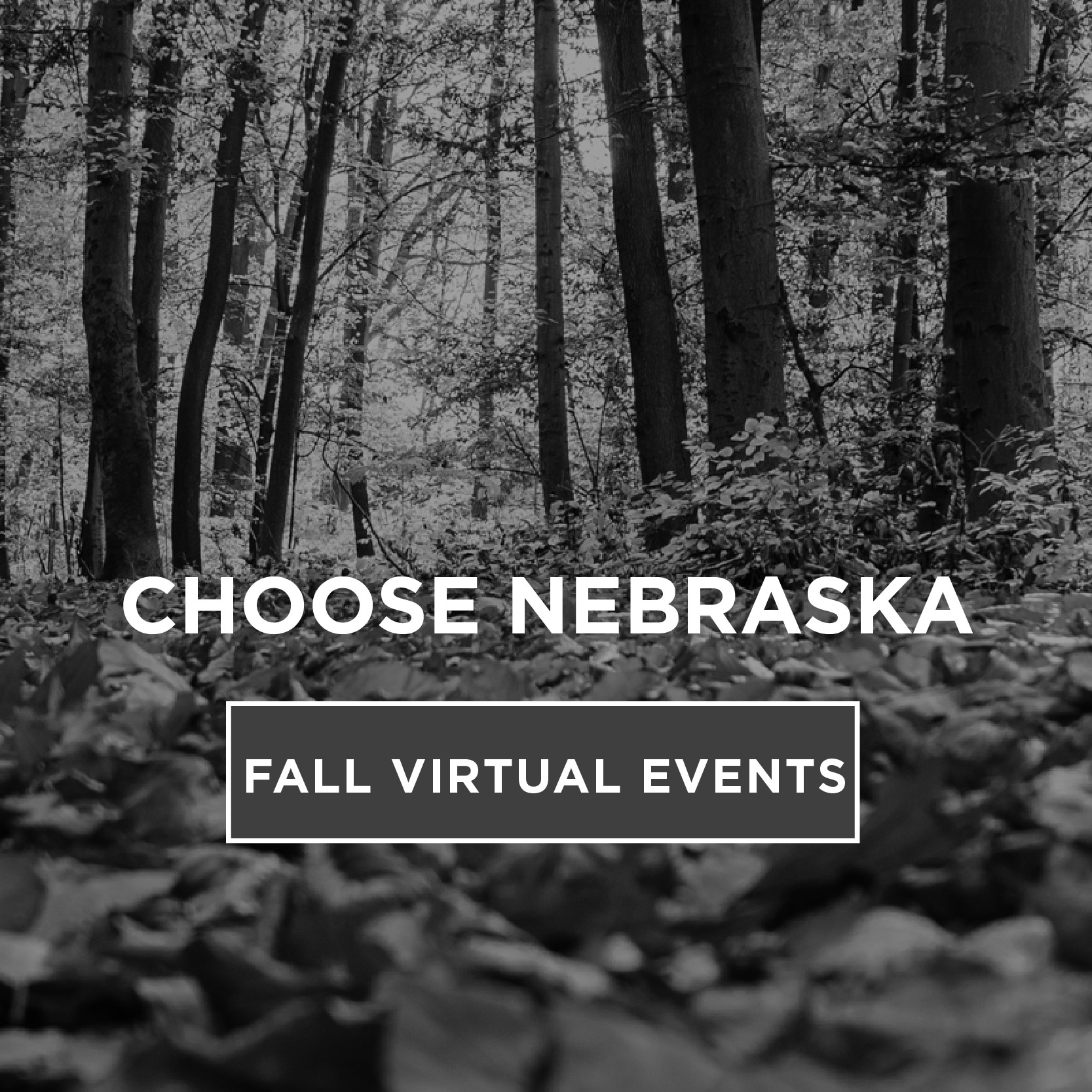 Choose Nebraska- Fall Virtual Events