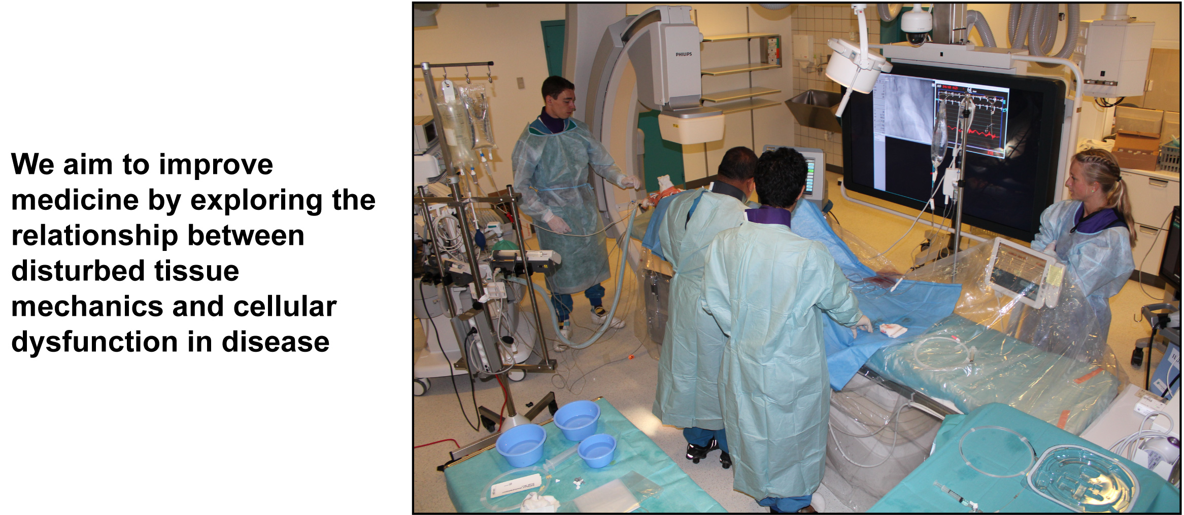 Collaborator Dr. Ranil de Silva implants a shear-modifying stent into the left anterior descending coronary artery of a hypercholesterolemic pig (Pedrigi et al., Circulation, 2015).