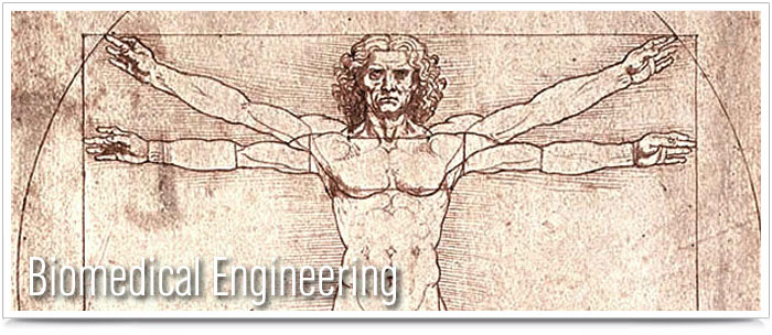 Biomedical Engineering Banner