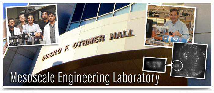 Mesoscale Engineering Lab