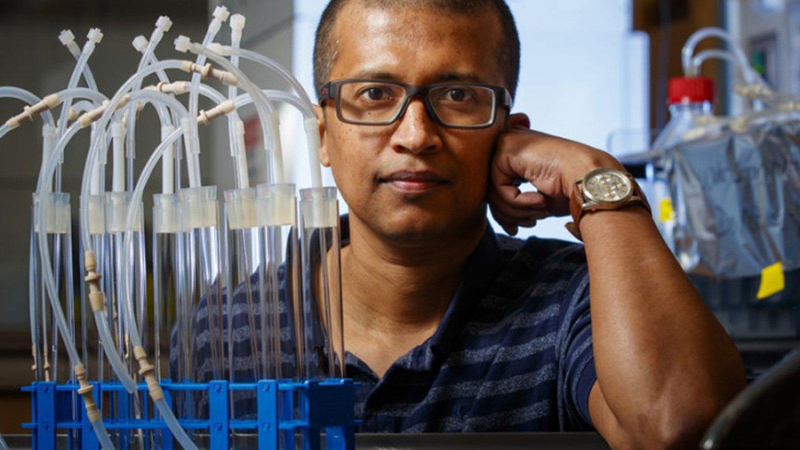Rajib Saha, assistant professor of chemical and biomolecular engineering.